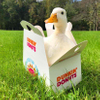 Avatar of Krissy Ellis (Dunkin Ducks)