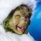 Avatar of The Grinch