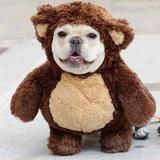 Avatar of Charlie The Teddy Bear