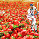 Avatar of Darryl Strawberry