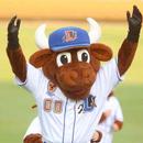 Avatar of Wool E. Bull